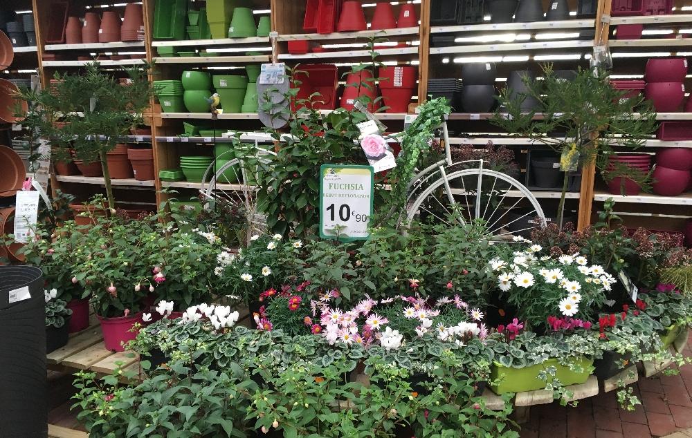 Distribution jardin : le magasin est-il menacé ?