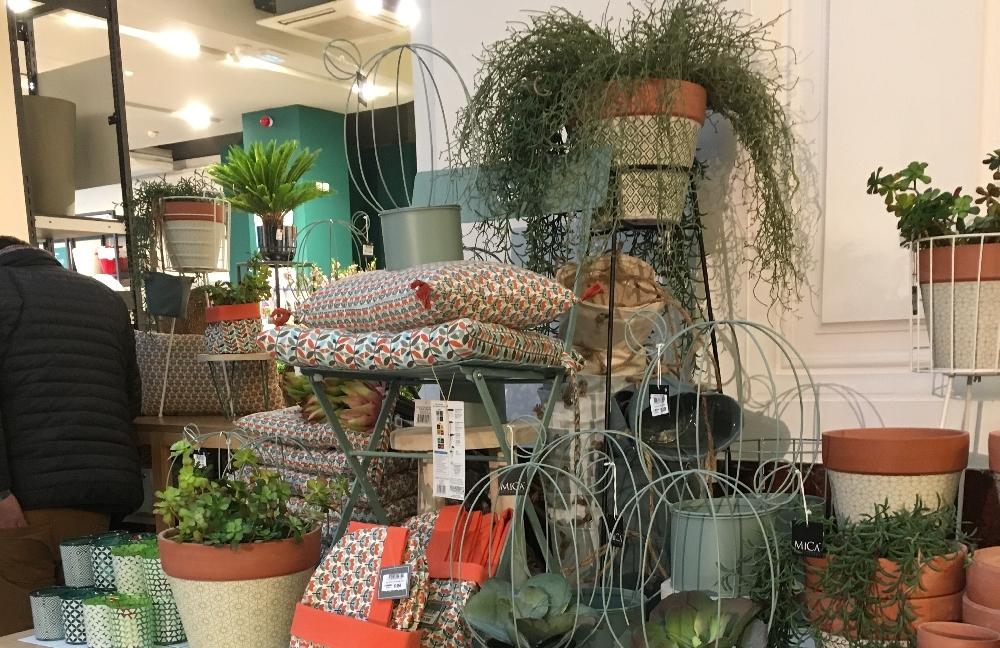 Les jardineries deviendraient-elles urbaines ?